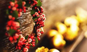 【3日間限定】 クリスマスSpecial Fair<成約特典付>